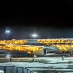Презентация A350 от Сингапурских авиалиний